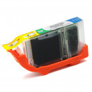 Canon Inkjet Cartridge BCi-6g